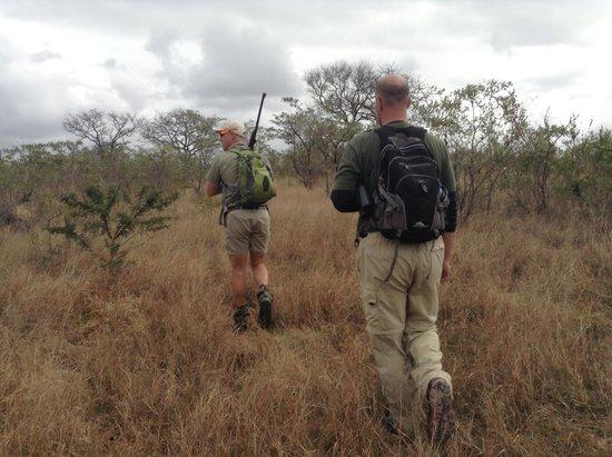 Sabi Sabi Little Bush Camp : A walking tour with Russ. A must!