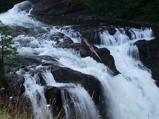Salish Lodge & Spa: Falls