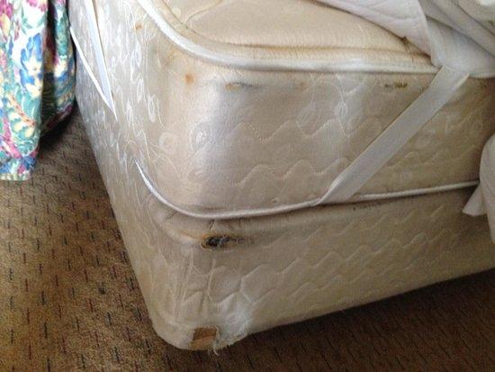 Howard Johnson Inn Cleveland Airport : Dirty mattress and boxspring