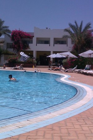 Mexicana Sharm Resort: pool view room