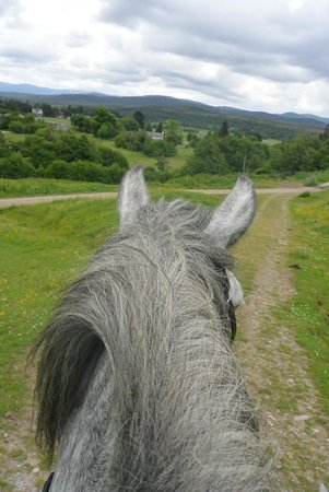 Newtonmore Riding Centre: Atop Zeno for a great ride!