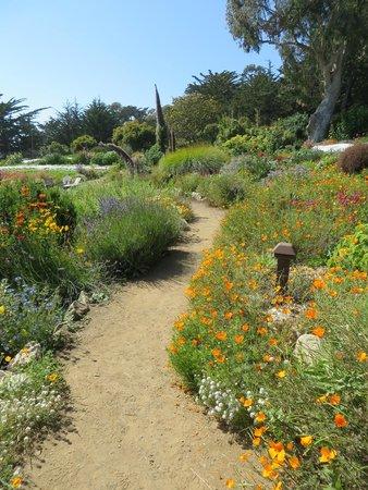 The Esalen Institute: Garden Path