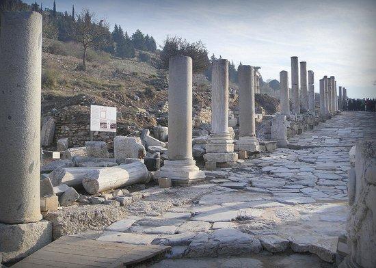 Vieille ville d'Éphèse : Ruinas Antigua Ciudad Efeso