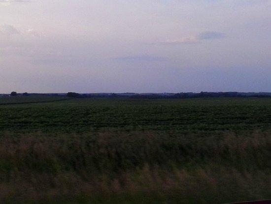 Boulders Inn & Suites: Corn fields all around