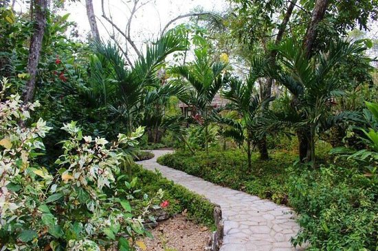 Mystic River Resort: Mystic River Grounds. This is a photo of the walkway to our private casita.