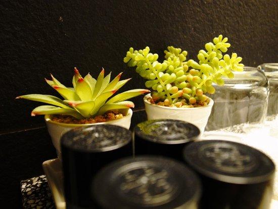 The Rothschild 71: plante