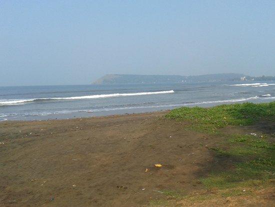 Kohinoor Samudra Beach Resort : Morning