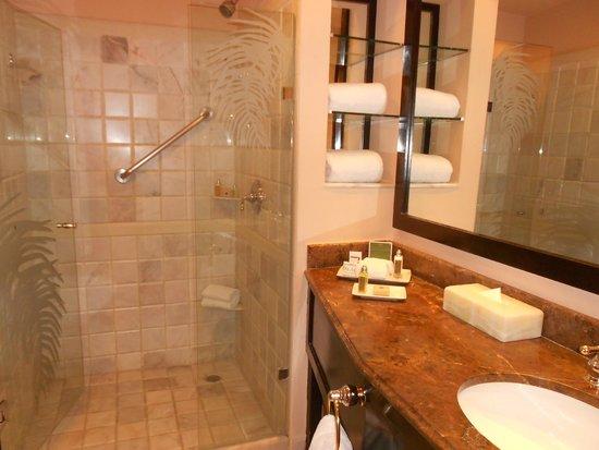Cozumel Palace : Bathroom