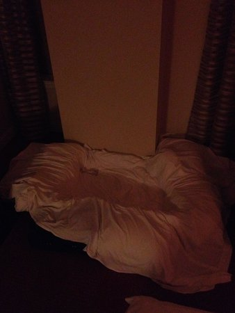 Renaissance Blackstone Chicago Hotel: The wain's sleepin' nest - first night.