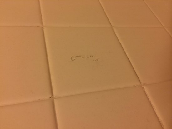Rodeway Inn & Suites: In the shower