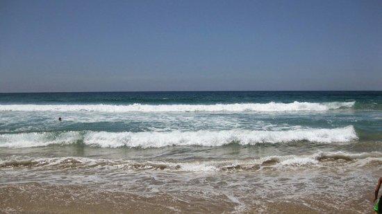 Rosarito Beach: Surf