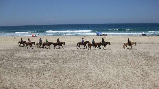 Rosarito Beach: Horseback riding