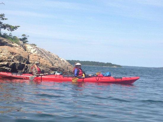 Maine State Sea Kayak: Kayak tour