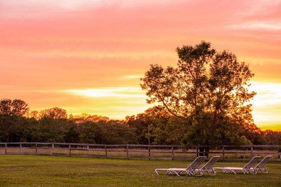 Historic Jacob Hill Inn: Coucher de soleil sur le jardin