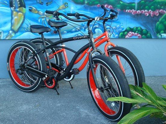 Rad Bicycles, Hobbies, and Rentals