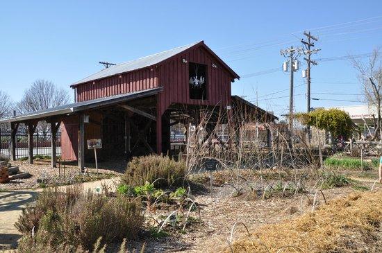 Greensboro Children's Museum : The Edible Schoolyard...