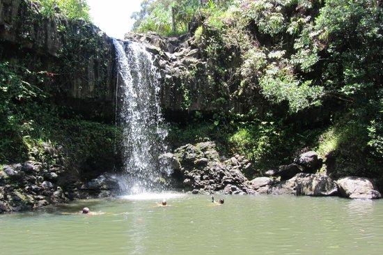 Hike Maui : Waterfall on hike