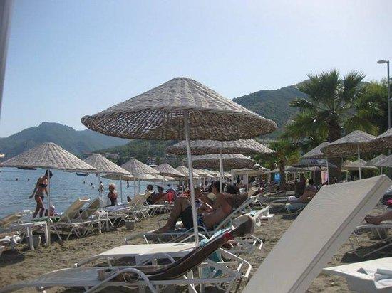 Golden Rock Beach Hotel : sandy beach area with sunbeds and umbrellas