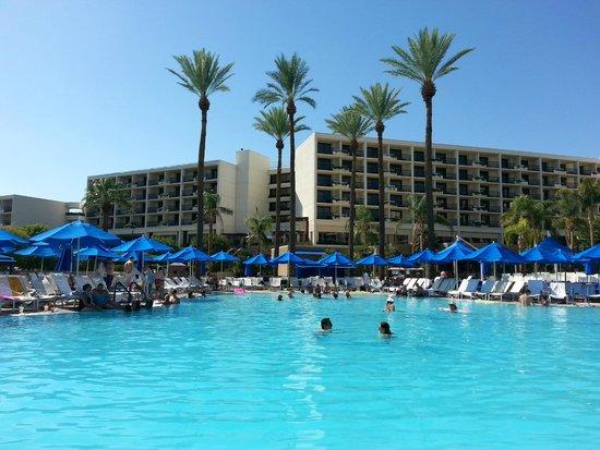 JW Marriott Desert Springs Resort & Spa: relaxing pool