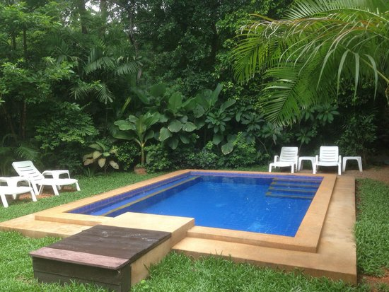 Bungalows Guesthouse: La piscine