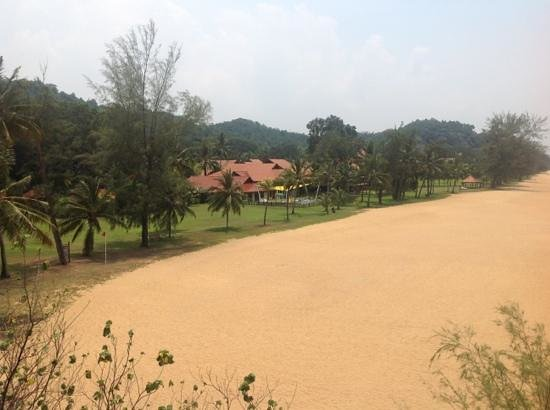 Club Med Cherating Beach: View from tree top walk