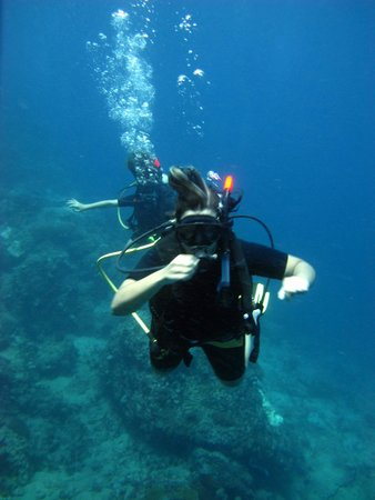CSI: SAMUI Dive School: I am diving now~~