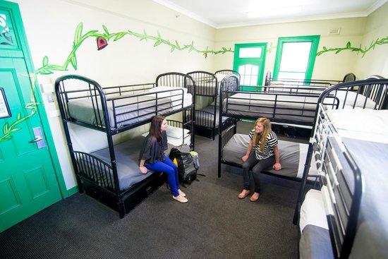 Nomads Brisbane Hostel : The 10 Bed Jungle Room
