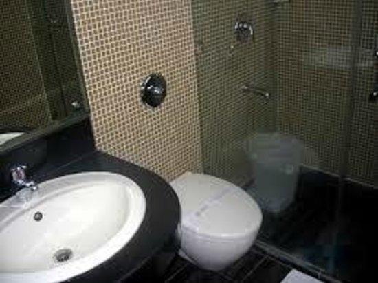 Rahul Palace Hotel : washroom
