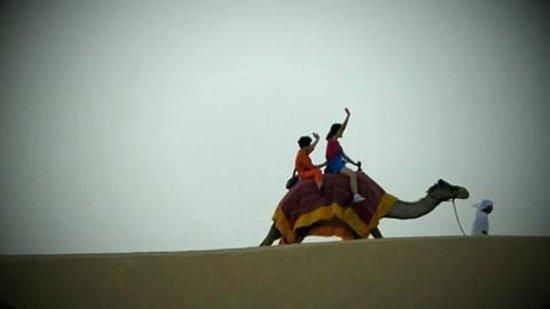 Dubai Desert Conservation Reserve: .....