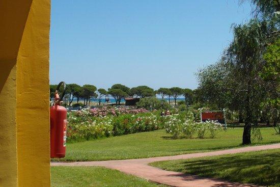 Villaggio Baia dei Pini: vista spiaggia dall'hotel