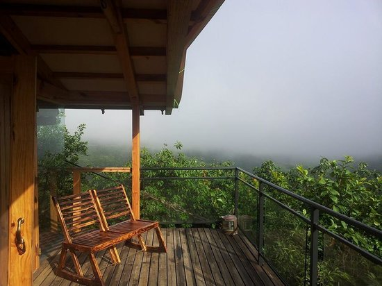 The Machan: Gallery view from our Canopy 1