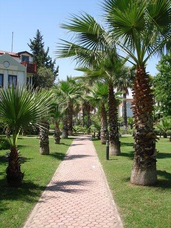 Club Tuana Fethiye: Beautiful grounds