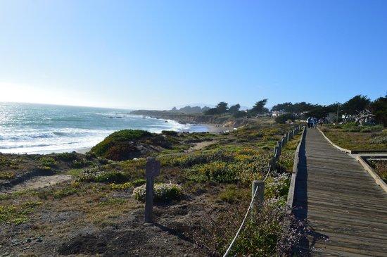 Moonstone Landing: Beach and Boardwalk