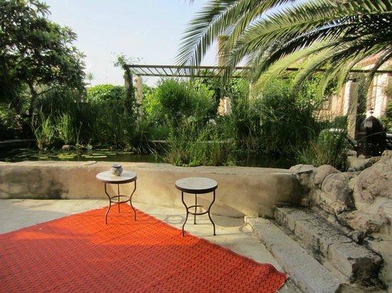 Jardi d'Arta Boutique-Hotel: Lichtspiel im Patio