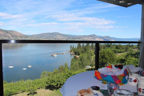 Paradise Cove Guest House: View from Safari room