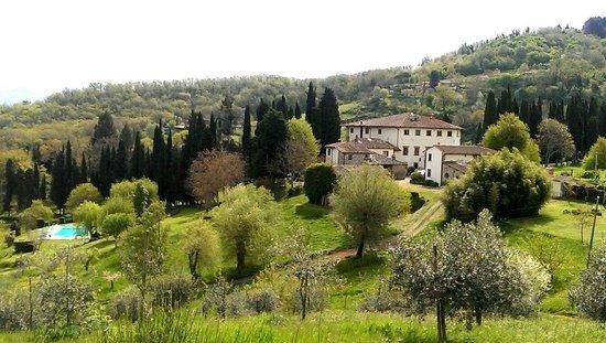Villa Campestri Olive Oil Resort : Eine Oase der Ruhe und Entspannung....
