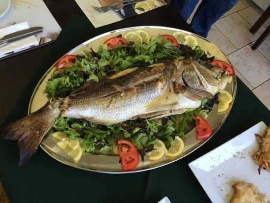 Simply Greek : Весит 3 кг стоит 260 евро