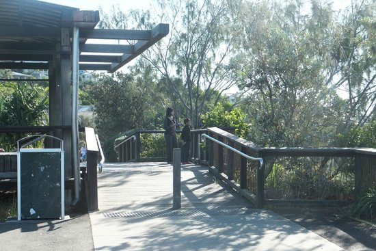 Papillon Coolum : Lookout point