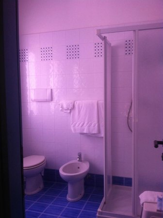 Hotel Regina: Ванная комната