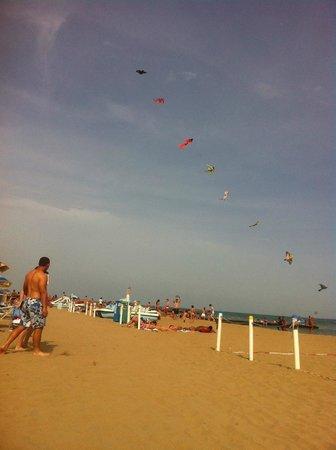 Hotel Regina: Песчаный пляж