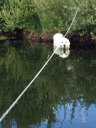 Spillers Farm : Merryck having a paddle ��