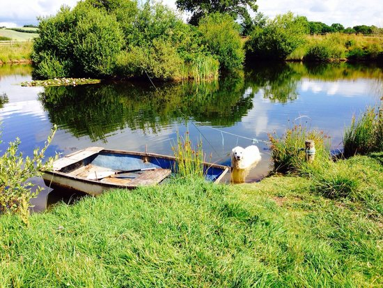 Spillers Farm : The beautiful lake