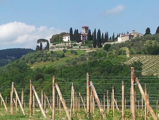 Castello Vicchiomaggio : Beautiful Castello Vicciomaggio