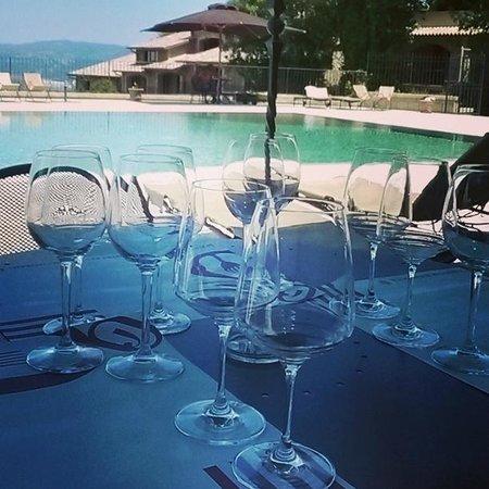 Altarocca Wine Resort: PISCINA/RISTORAZIONE