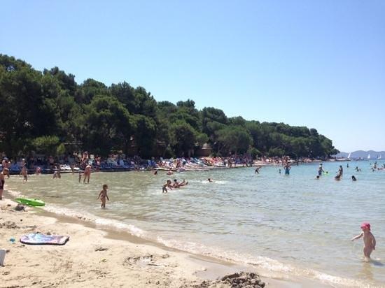 Photo of Pine Beach Pakostane