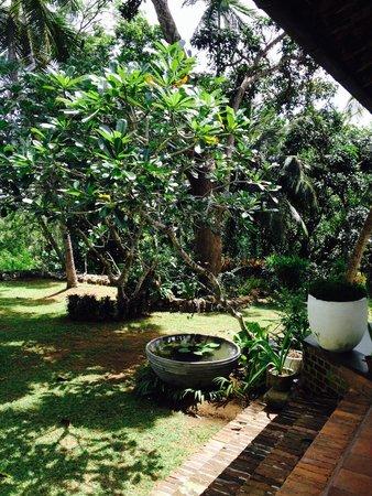 Templeberg Villa: Courtyard