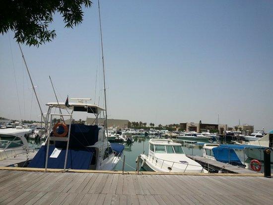 InterContinental Abu Dhabi: Puerto al fondo del hotel