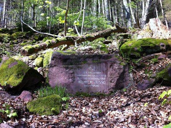 Königstuhl: engraved stone from 18th century near Linsenteicheck