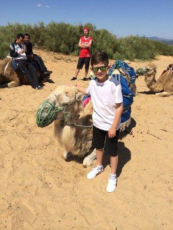 Concorde Hotel Marco Polo : Camel riding