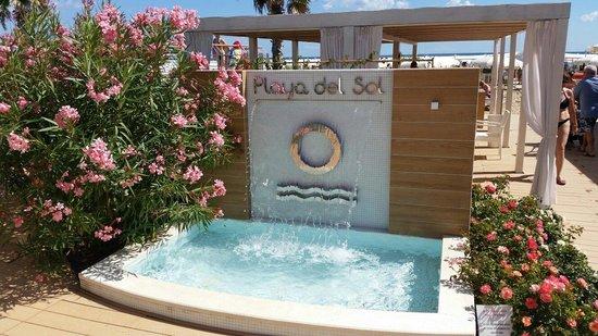 L\'entrata - l\'ottimo biglietto da visita - Foto di Playa del Sol ...